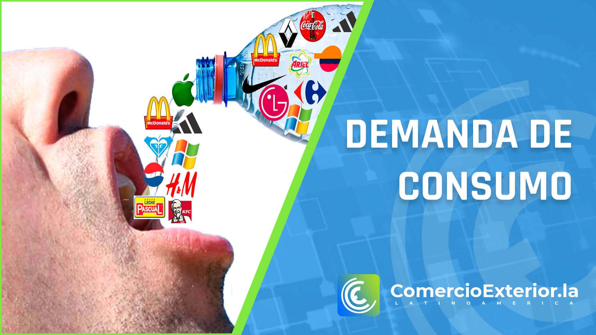 que es demanda de consumo