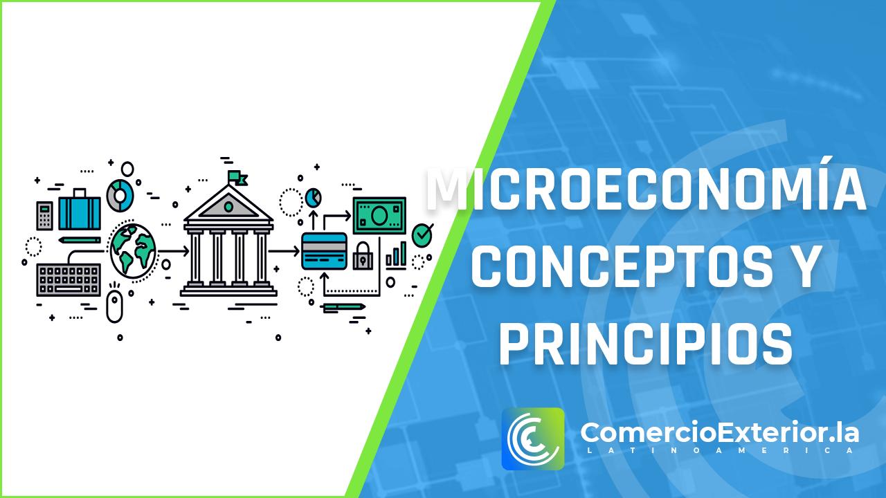 microeconomia, conceptos y principios